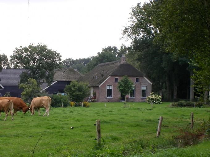 Hallenhuisboerderij Veeningen